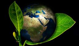 O impacto ambiental e o desenvolvimento sustentável