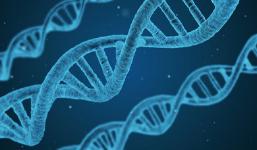 Ciências: Classificação dos seres vivos